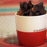 Saturday Sweets: Chocolate Pretzel Bark