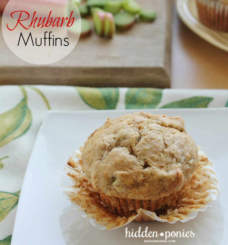Perfect simple rhubarb muffins | hiddenponies.com