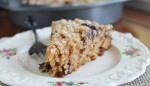 Pumpkin Cake with Chocolate Chip Streusel