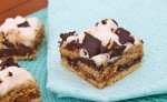 Baked S'mores Squares