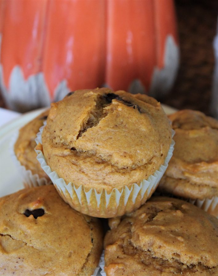 pumpkin muffin with chocolate chips